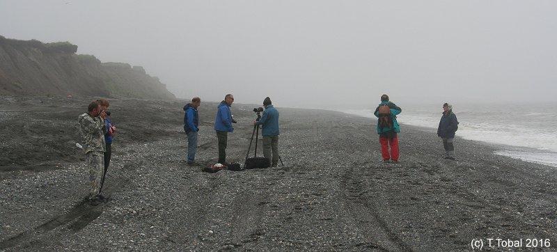 Kamchatka. Osos y volcanes