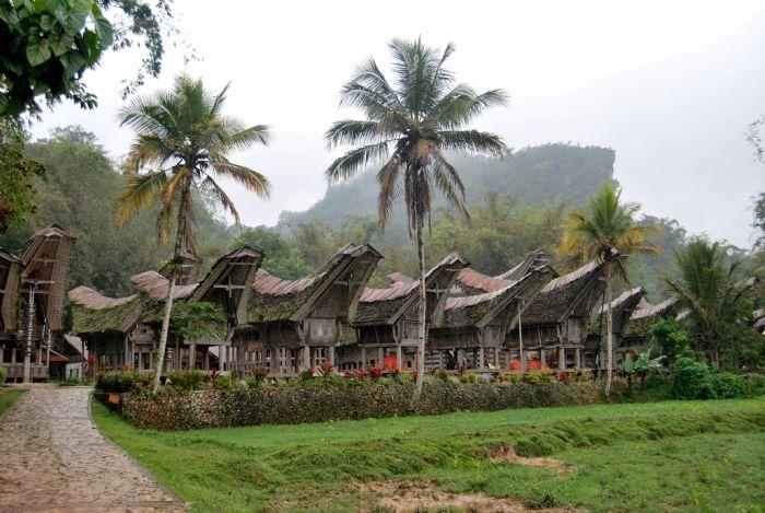 Foto de E. Diaz - Viaje a Indonesia Sulawesi